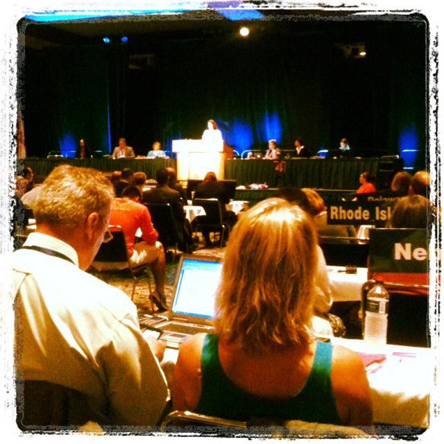 Kendra Gagnon's view from the floor of the APTA House of Delegates
